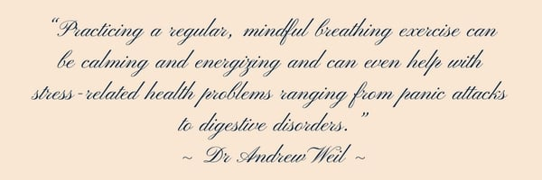 Dr Andrew Weil on breathing