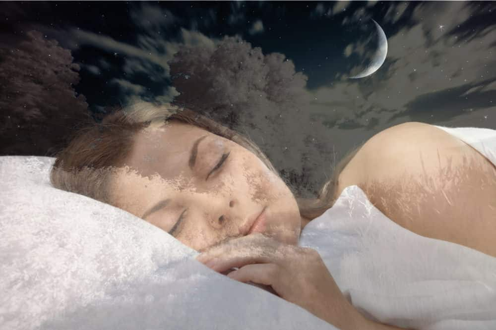 Why do we dream, and why is dreaming important?