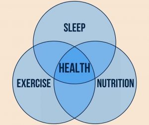 3 pillars of health